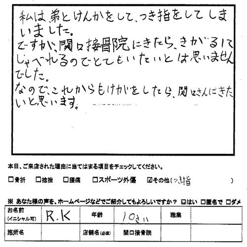 Voice033
